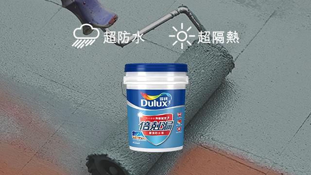 Promo - WP Roof Paint Banner